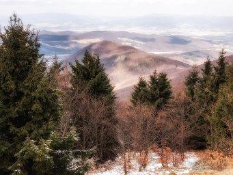 2017-03-12 Inovec