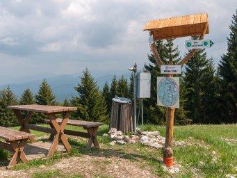 2017-05-20 Sidorovo, Malinné